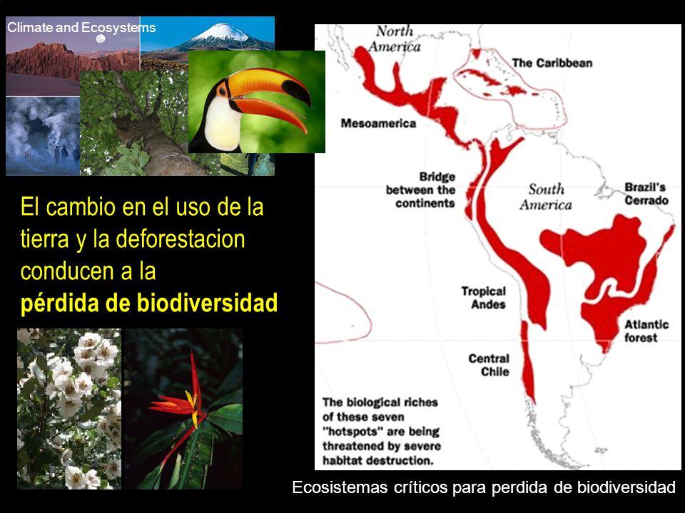 El cambio en el uso de la tierra y la deforestacion conducen a la
