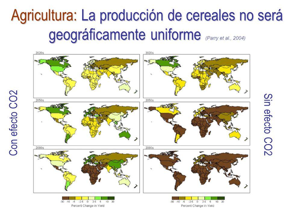 Agricultura: La producción de cereales no será geográficamente uniforme (Parry et al., 2004)