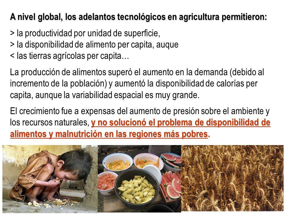 A nivel global, los adelantos tecnológicos en agricultura permitieron: