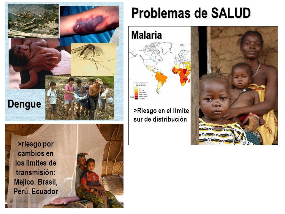 Problemas de SALUD Malaria Dengue