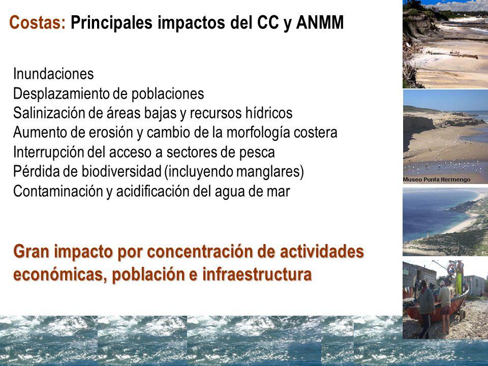 Costas: Principales impactos del CC y ANMM
