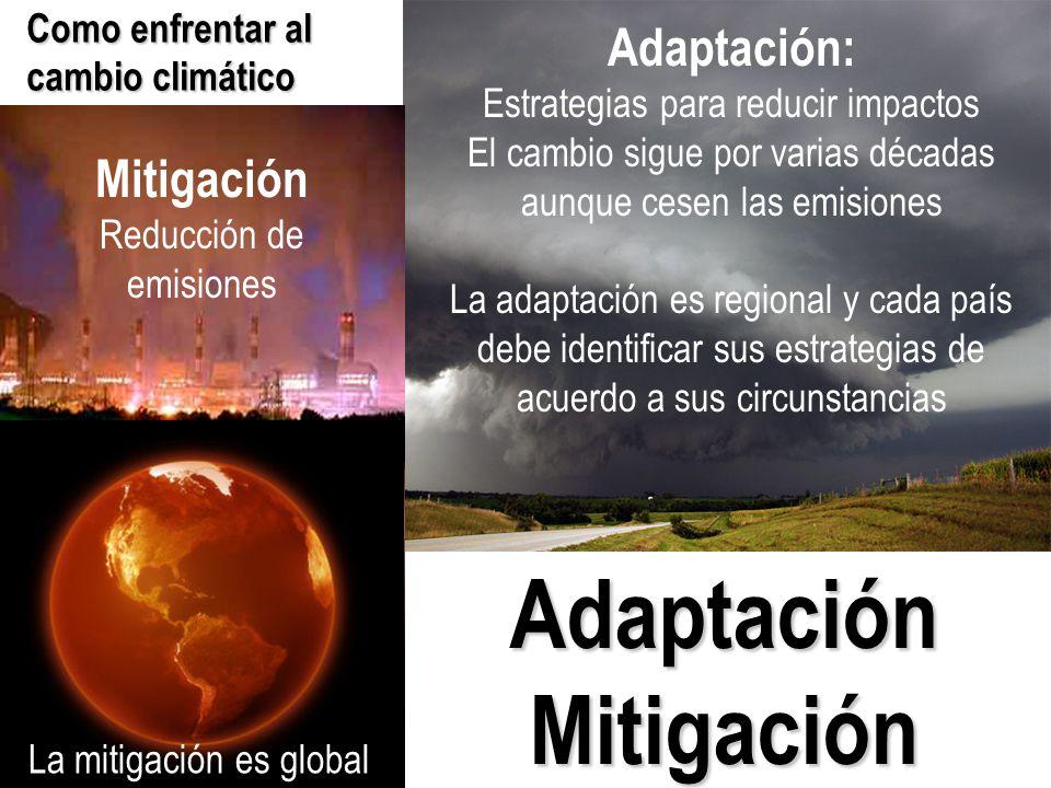 Adaptación Mitigación