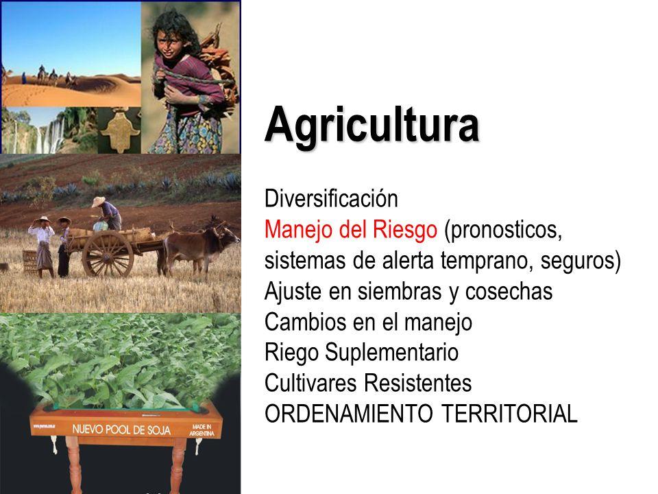 Agricultura Diversificación