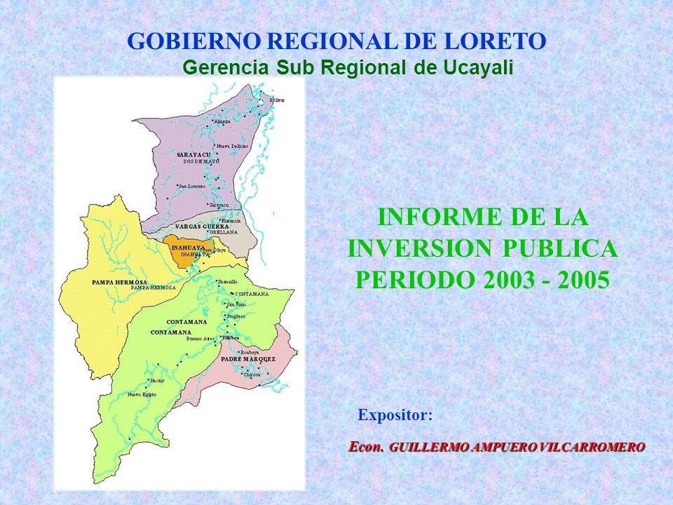 INFORME DE LA INVERSION PUBLICA PERIODO 2003 - 2005