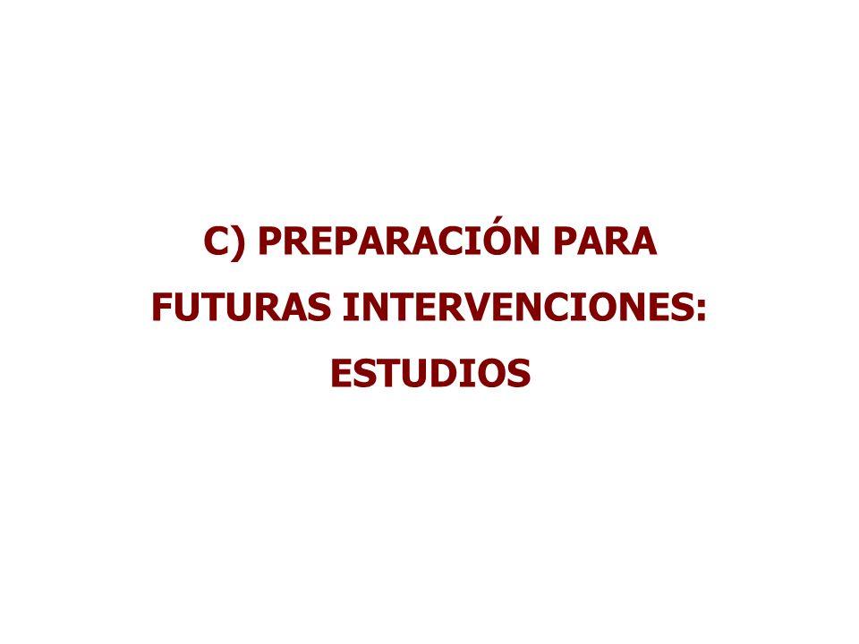FUTURAS INTERVENCIONES: