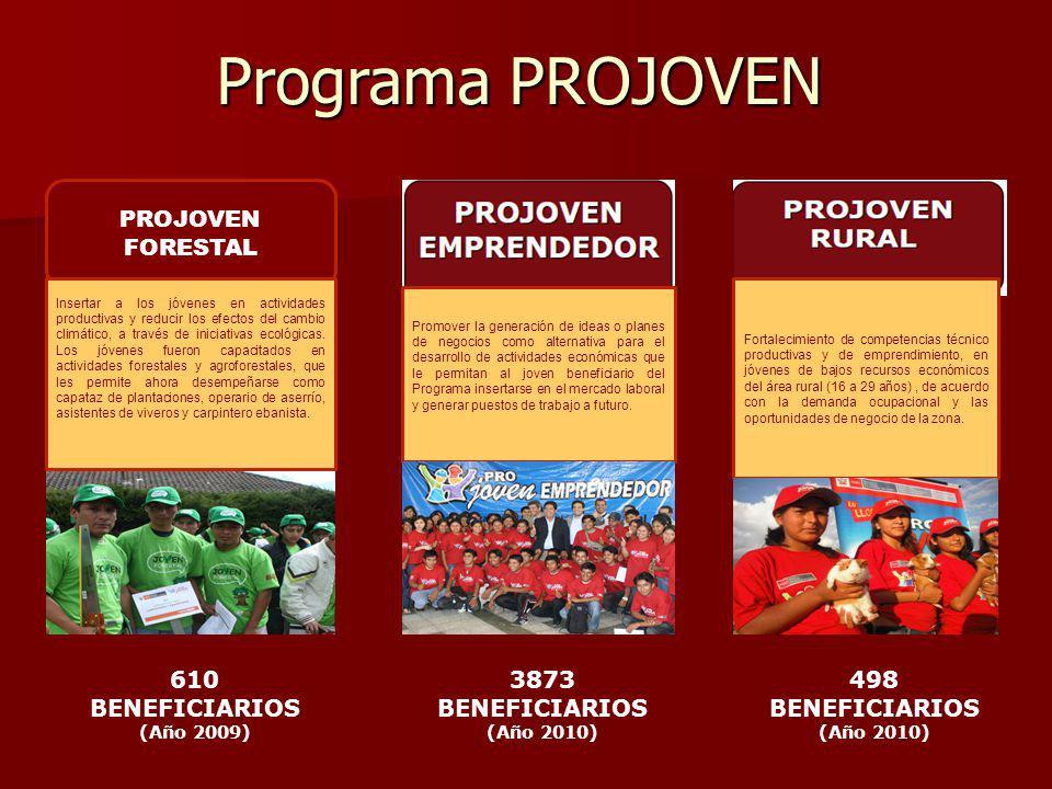 Programa PROJOVEN PROJOVEN FORESTAL 610 BENEFICIARIOS 3873