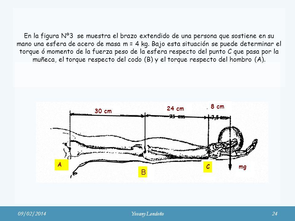 En la figura Nº3 se muestra el brazo extendido de una persona que sostiene en su mano una esfera de acero de masa m = 4 kg. Bajo esta situación se puede determinar el torque ó momento de la fuerza peso de la esfera respecto del punto C que pasa por la muñeca, el torque respecto del codo (B) y el torque respecto del hombro (A).