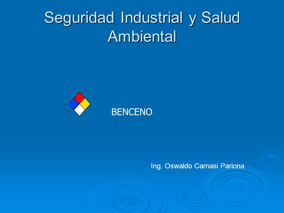 Seguridad Industrial y Salud Ambiental