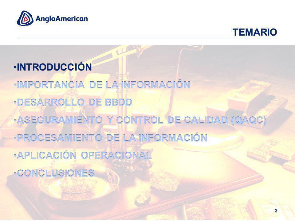 TEMARIO INTRODUCCIÓN. IMPORTANCIA DE LA INFORMACIÓN. DESARROLLO DE BBDD. ASEGURAMIENTO Y CONTROL DE CALIDAD (QAQC)