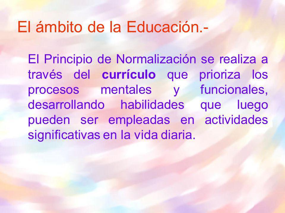 El ámbito de la Educación.-