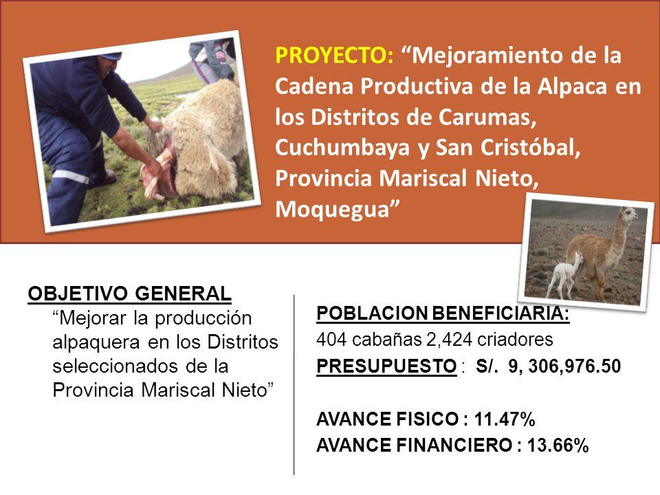 PROYECTO: Mejoramiento de la Cadena Productiva de la Alpaca en los Distritos de Carumas, Cuchumbaya y San Cristóbal, Provincia Mariscal Nieto, Moquegua