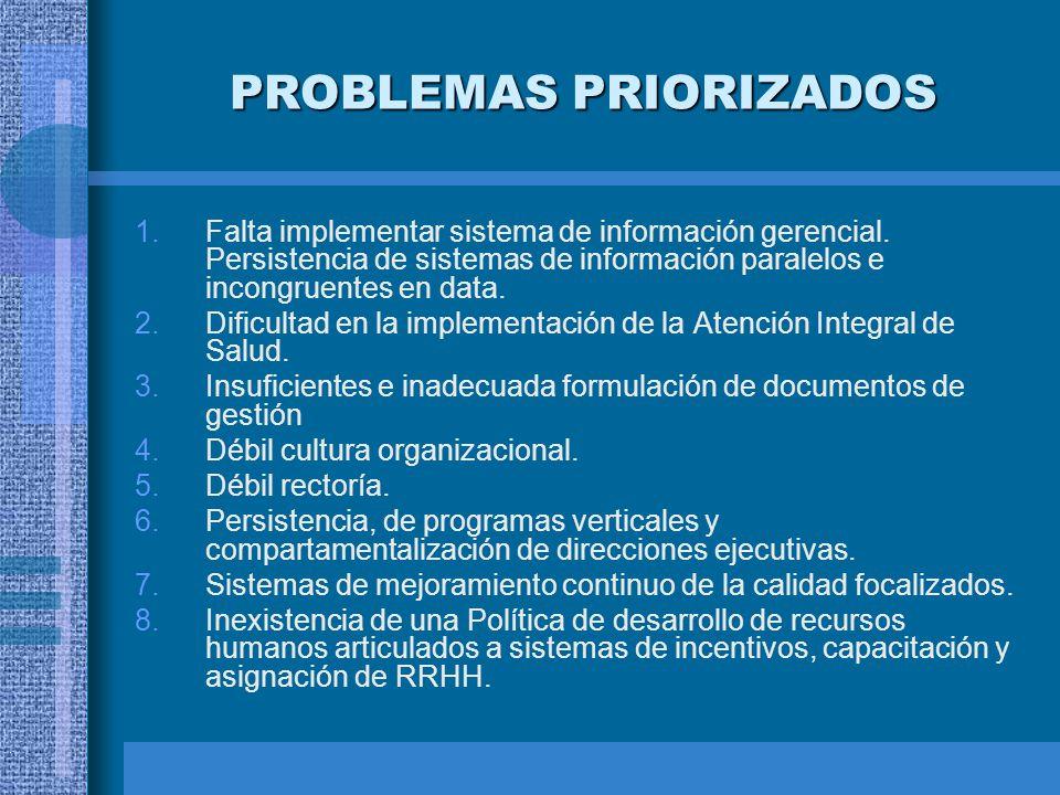 PROBLEMAS PRIORIZADOS