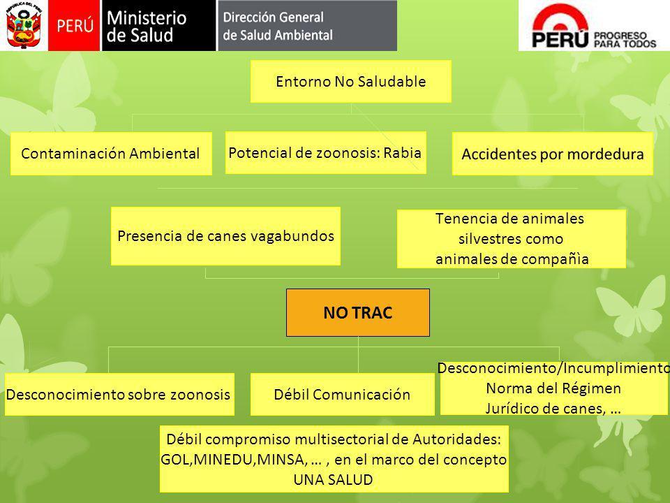 NO TRAC Entorno No Saludable Contaminación Ambiental