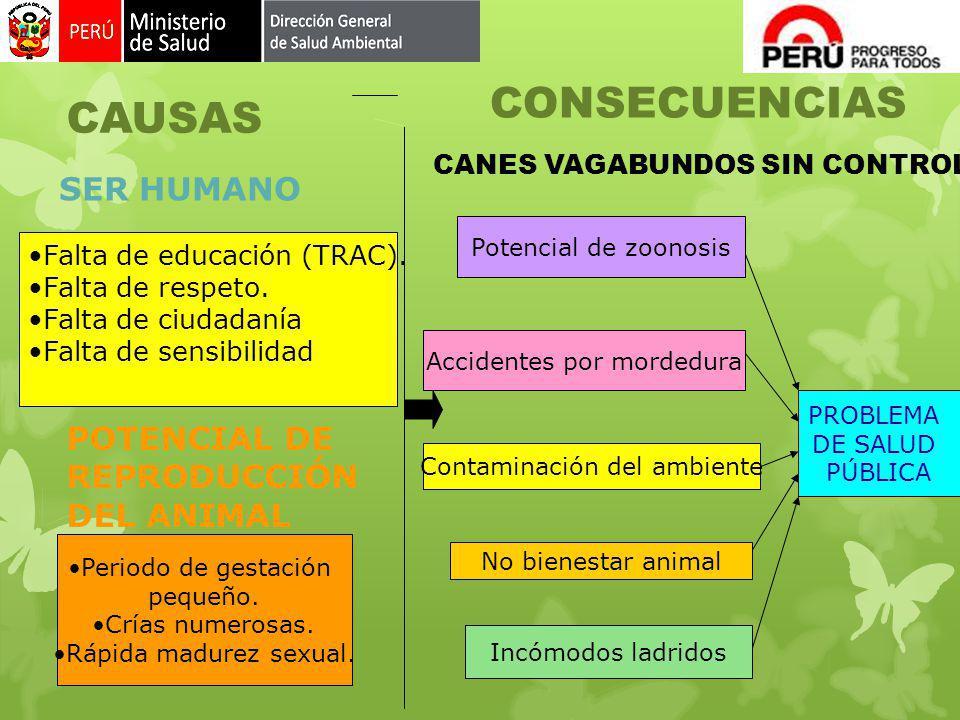 CONSECUENCIAS CAUSAS SER HUMANO POTENCIAL DE REPRODUCCIÓN DEL ANIMAL