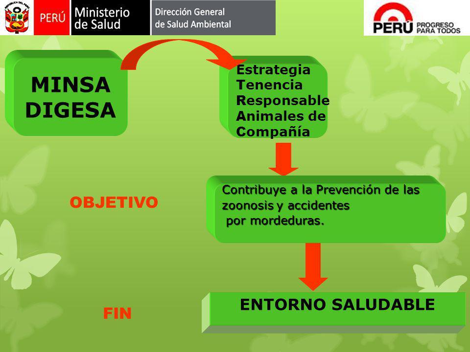 MINSA DIGESA OBJETIVO ENTORNO SALUDABLE FIN Estrategia Tenencia