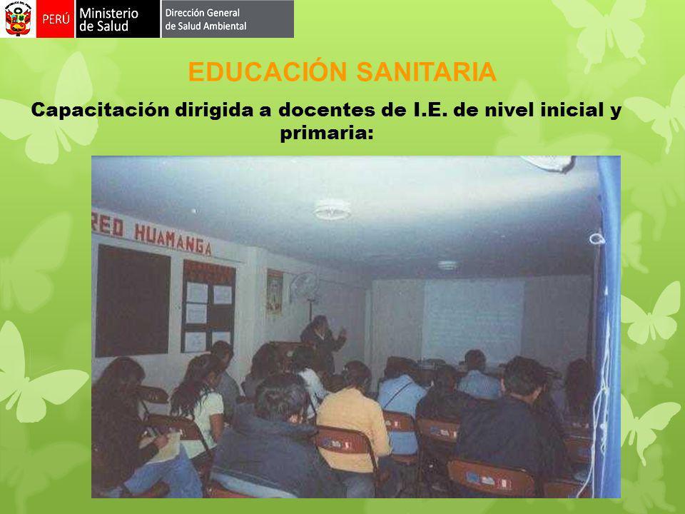 Capacitación dirigida a docentes de I.E. de nivel inicial y primaria: