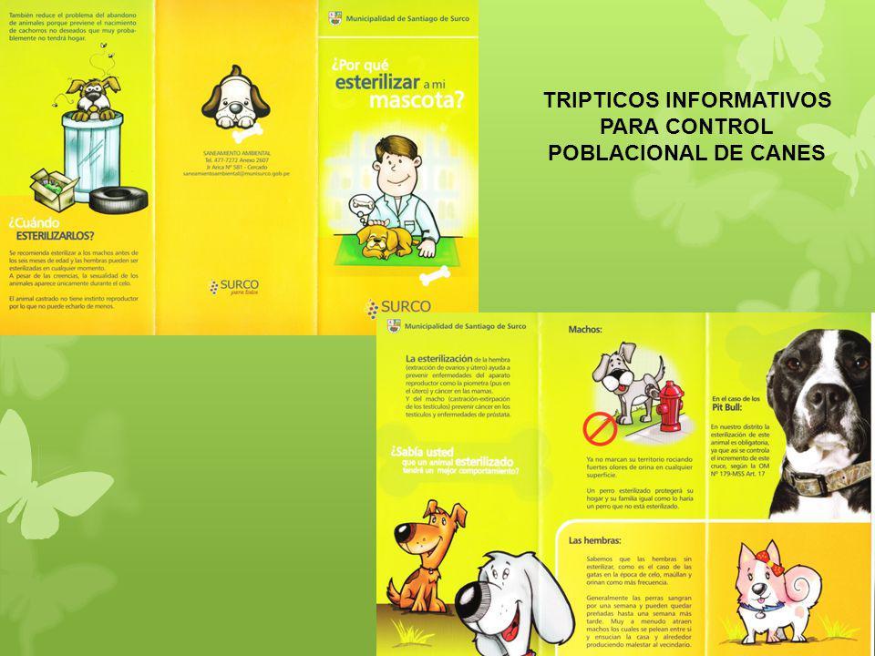 TRIPTICOS INFORMATIVOS PARA CONTROL POBLACIONAL DE CANES