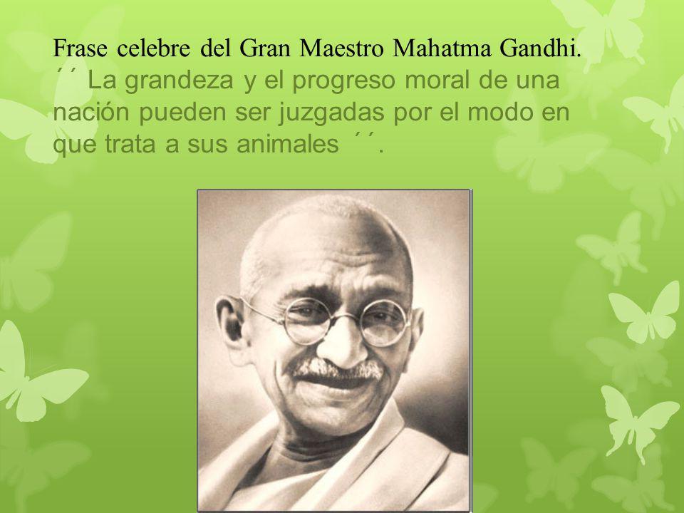 Frase celebre del Gran Maestro Mahatma Gandhi