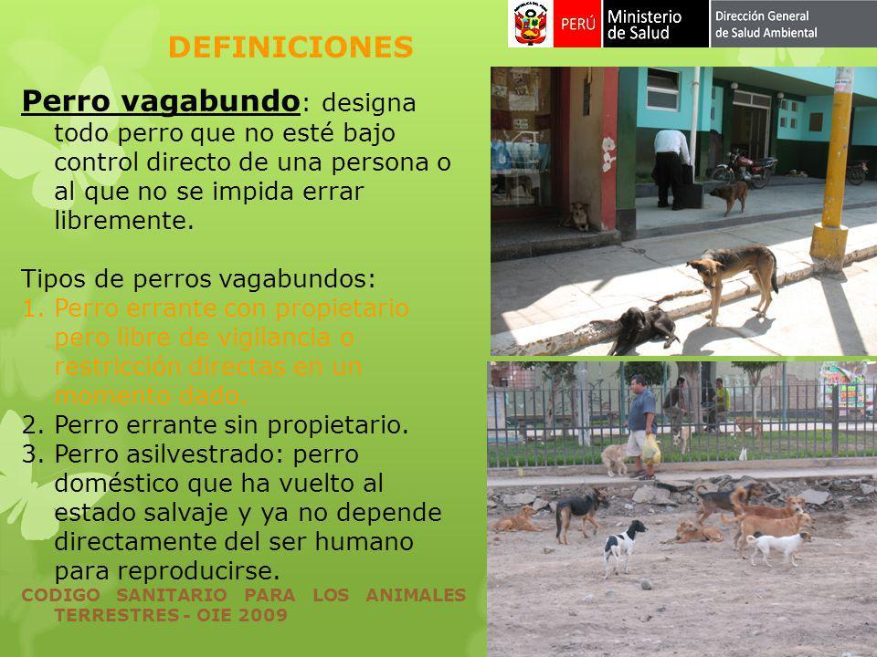 DEFINICIONES Perro vagabundo: designa todo perro que no esté bajo control directo de una persona o al que no se impida errar libremente.