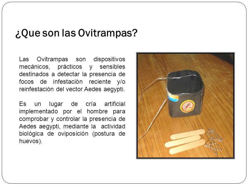 ¿Que son las Ovitrampas