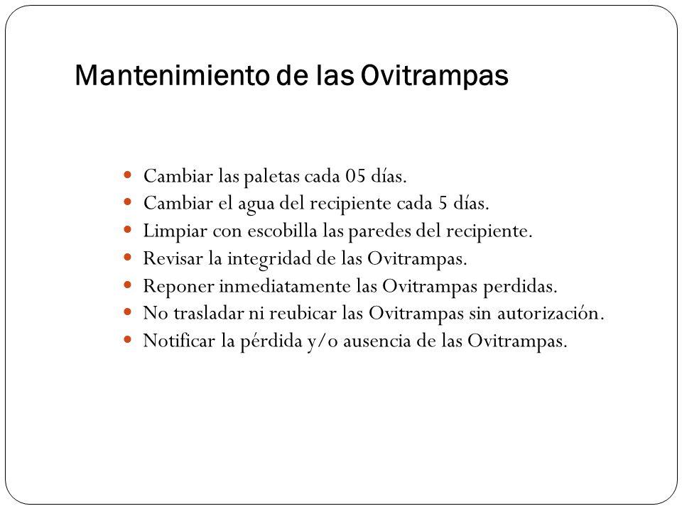 Mantenimiento de las Ovitrampas