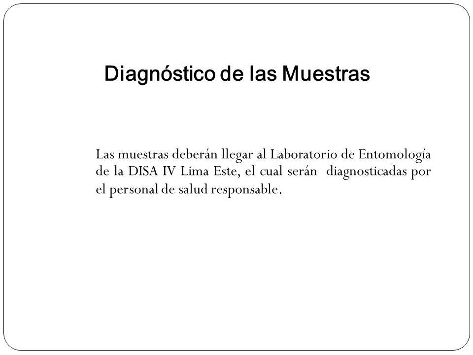 Diagnóstico de las Muestras