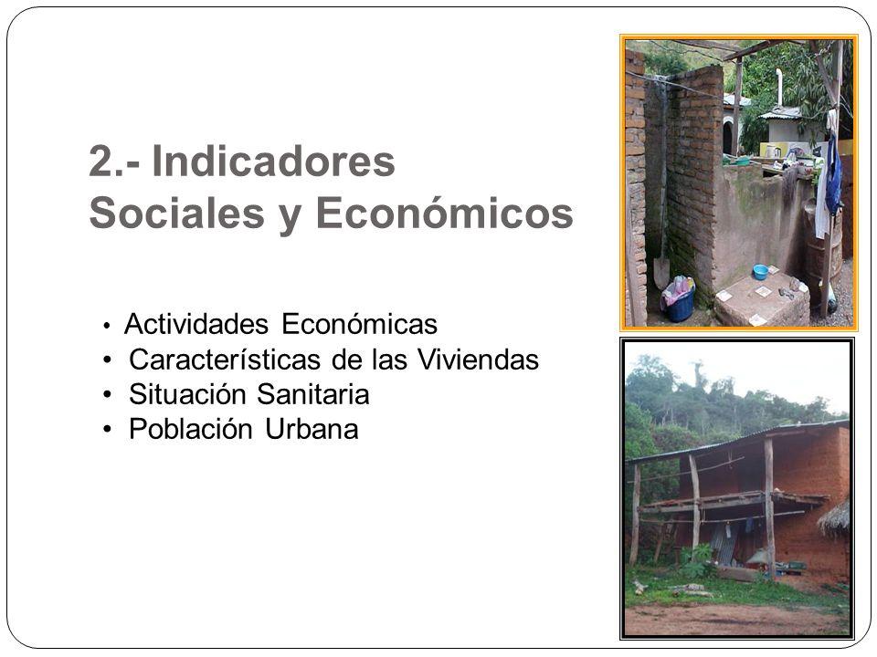 2.- Indicadores Sociales y Económicos