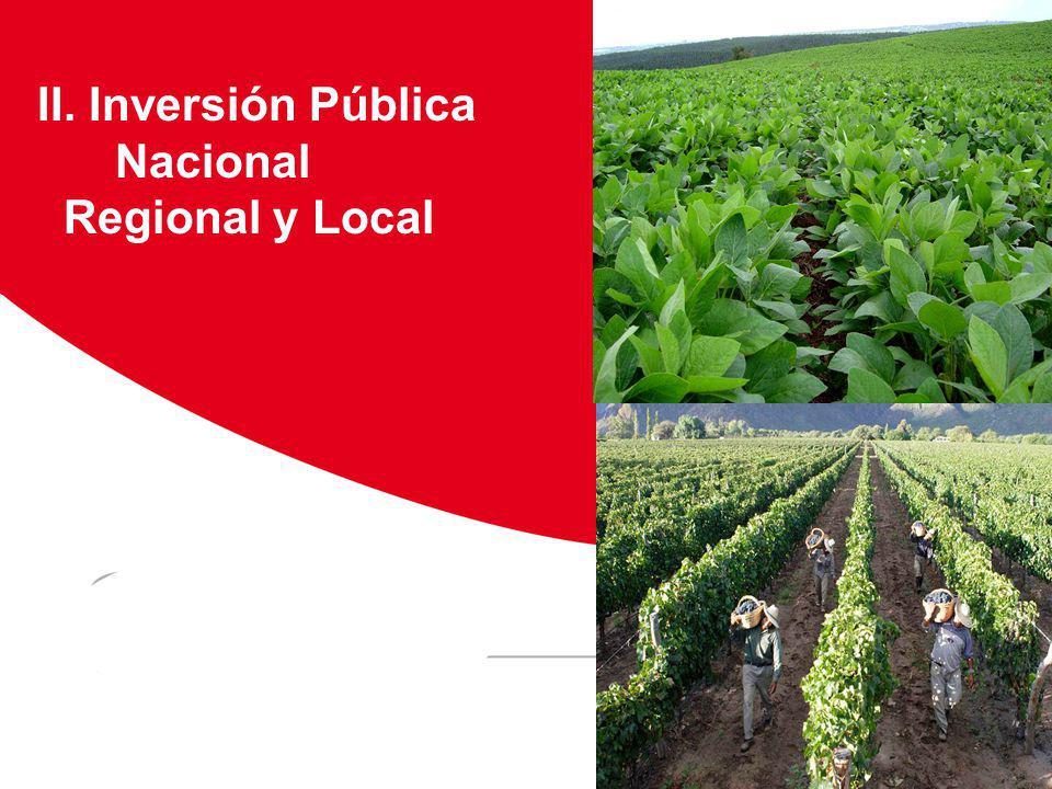 II. Inversión Pública Nacional Regional y Local Viñedos