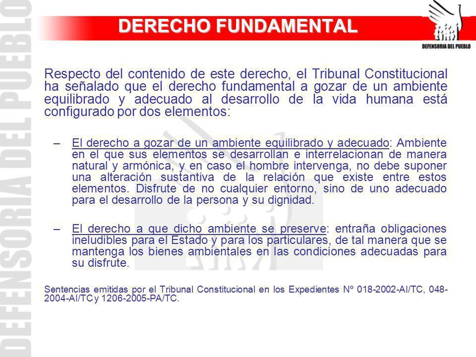 DERECHO FUNDAMENTAL