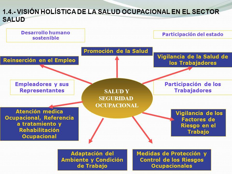 1.4.- VISIÓN HOLÍSTICA DE LA SALUD OCUPACIONAL EN EL SECTOR SALUD