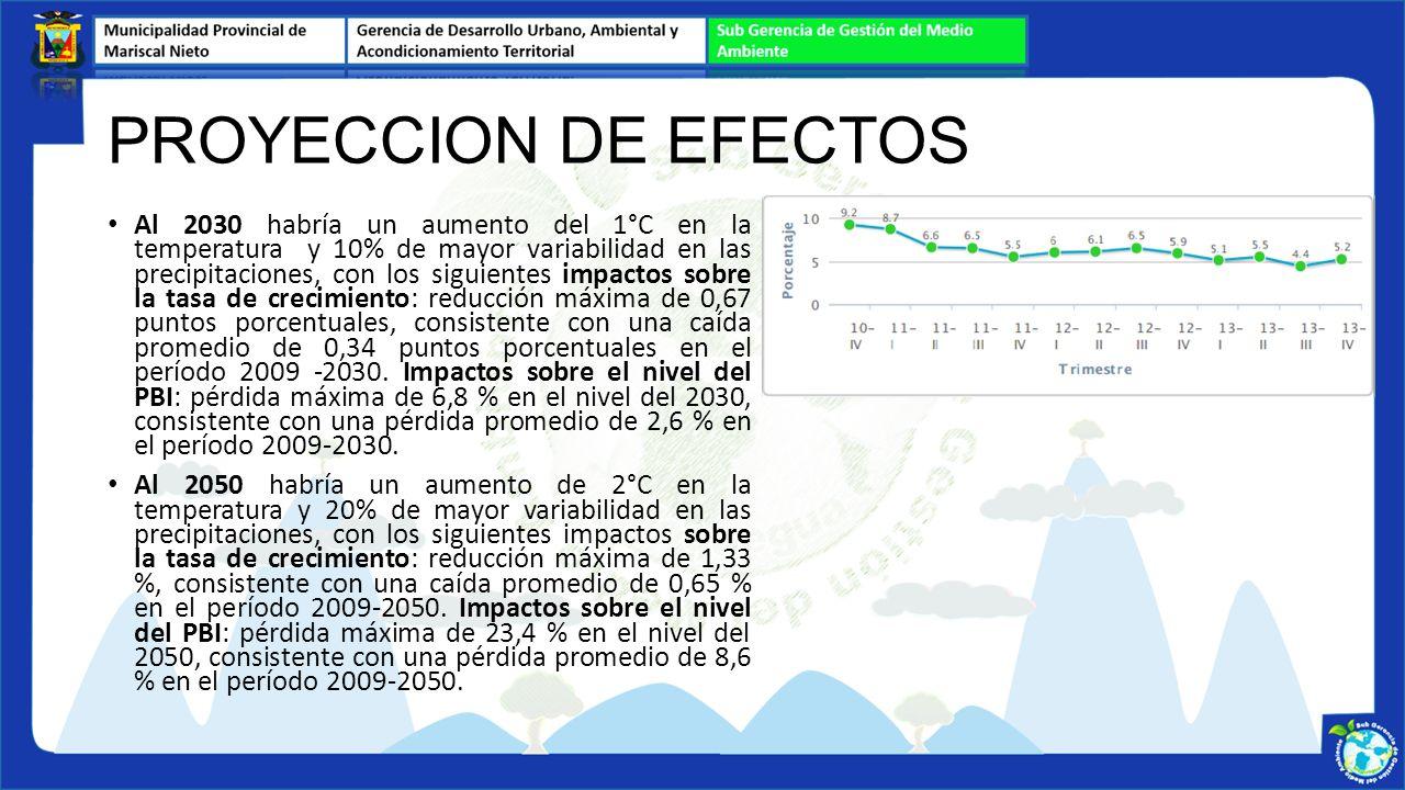 PROYECCION DE EFECTOS