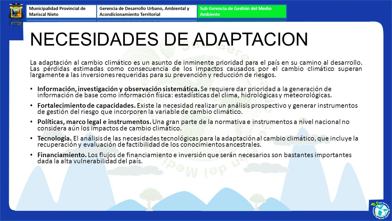 NECESIDADES DE ADAPTACION