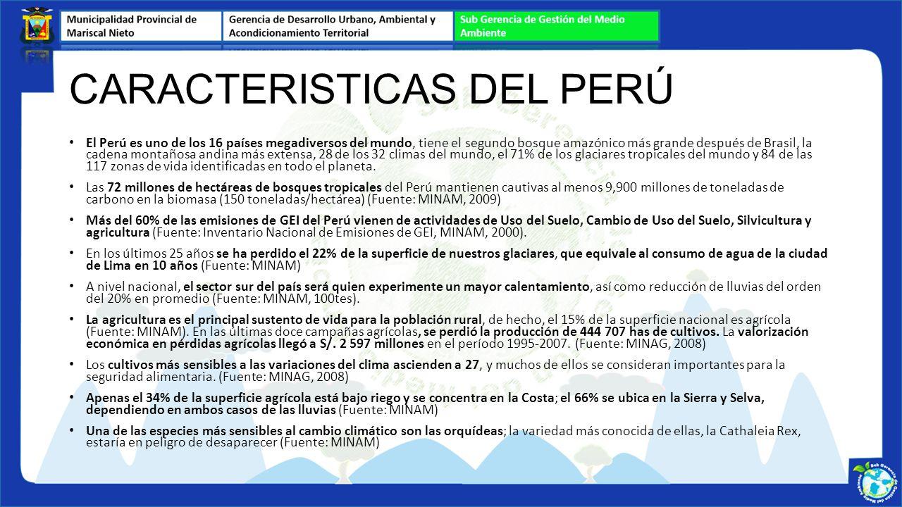 CARACTERISTICAS DEL PERÚ