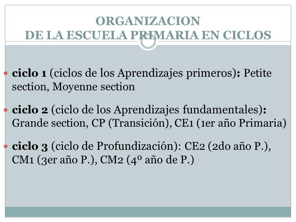 ORGANIZACION DE LA ESCUELA PRIMARIA EN CICLOS