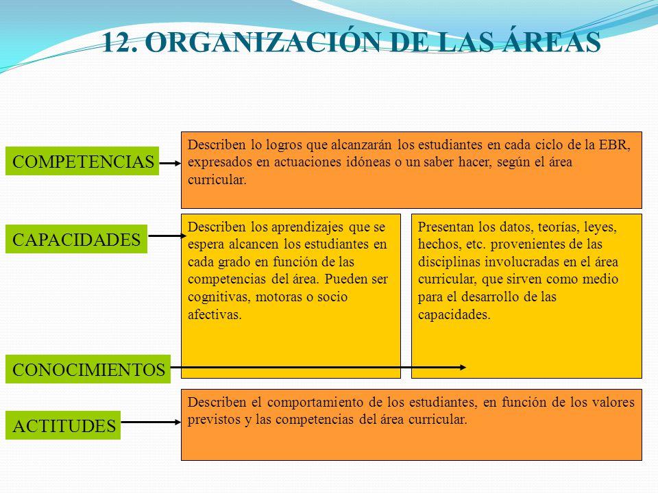 12. ORGANIZACIÓN DE LAS ÁREAS