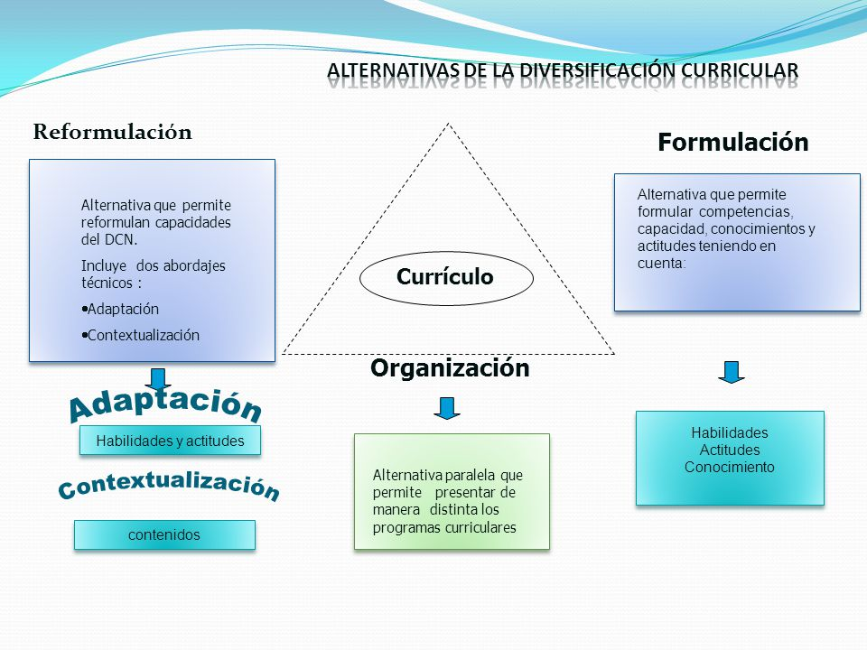 ALTERNATIVAS DE LA DIVERSIFICACIÓN CURRICULAR