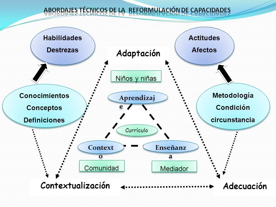 Abordajes técnicos DE LA reformulación de capacidades