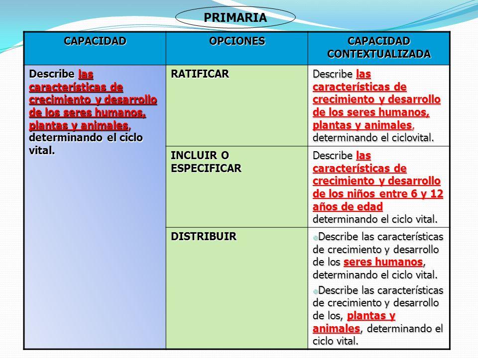 CAPACIDAD CONTEXTUALIZADA