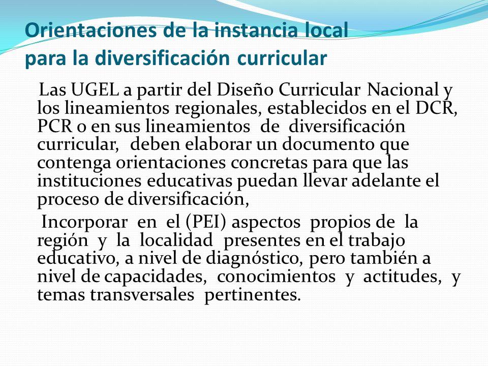 Orientaciones de la instancia local para la diversificación curricular