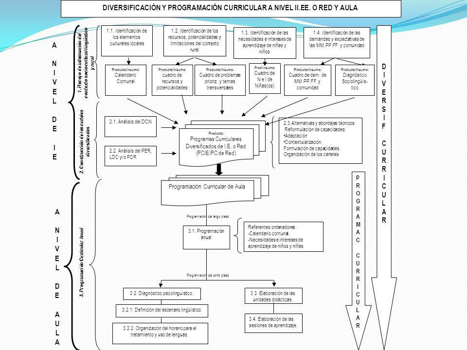 DIVERSIFICACIÓN Y PROGRAMACIÓN CURRICULAR A NIVEL II.EE. O RED Y AULA