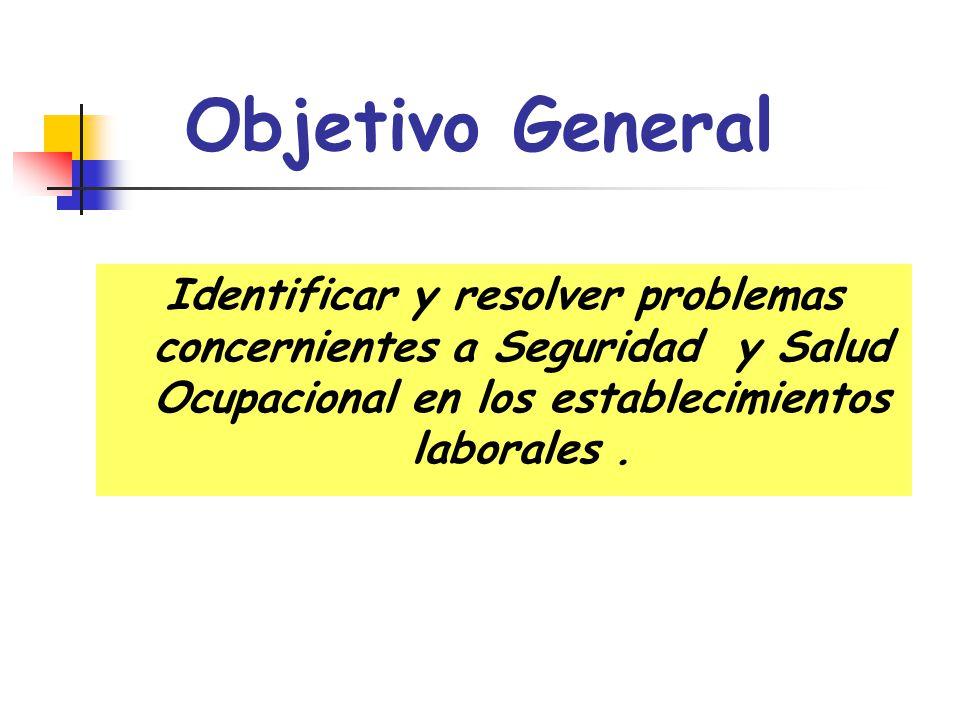 Objetivo General Identificar y resolver problemas concernientes a Seguridad y Salud Ocupacional en los establecimientos laborales .