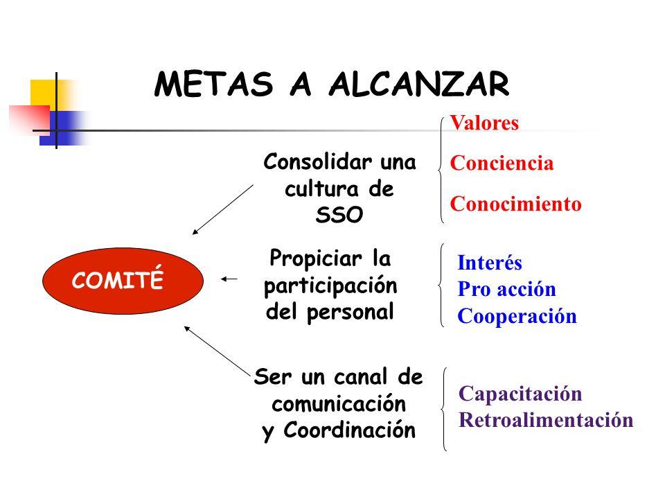 METAS A ALCANZAR Valores Conciencia Conocimiento