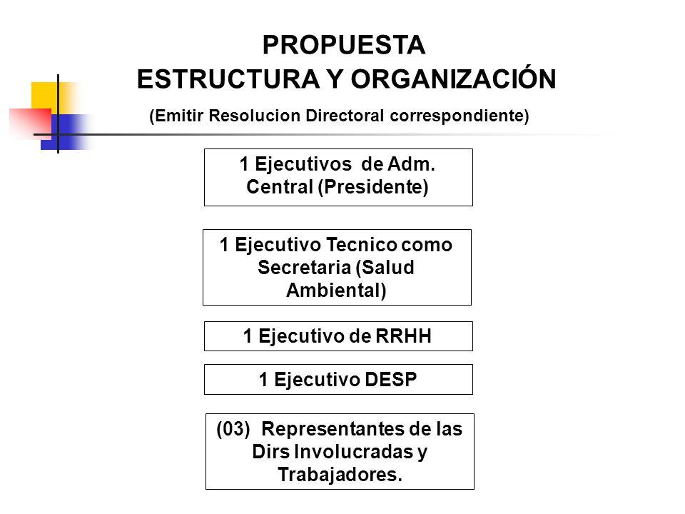 PROPUESTA ESTRUCTURA Y ORGANIZACIÓN