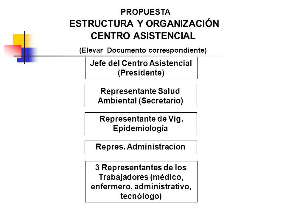 ESTRUCTURA Y ORGANIZACIÓN CENTRO ASISTENCIAL