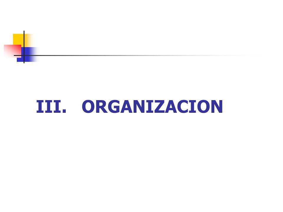III. ORGANIZACION
