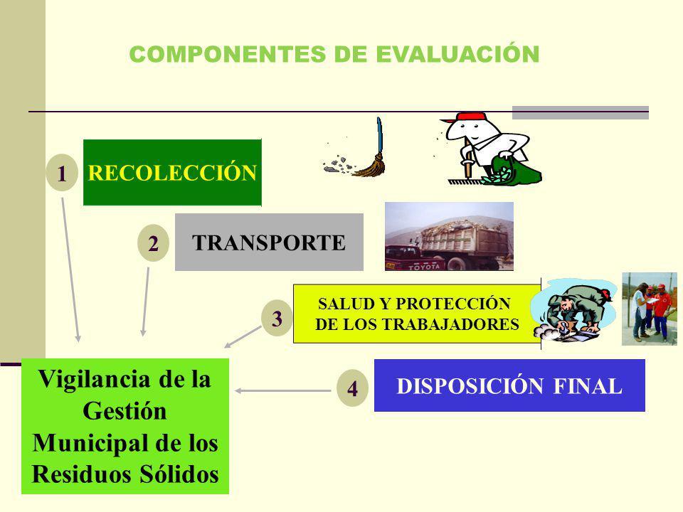 COMPONENTES DE EVALUACIÓN