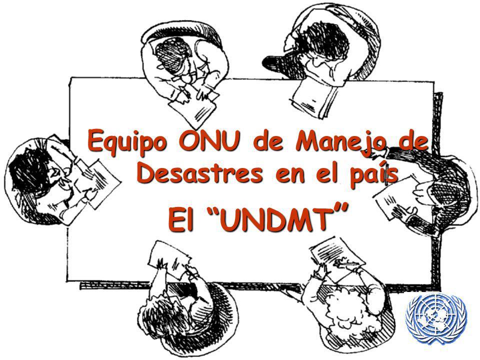 Equipo ONU de Manejo de Desastres en el país