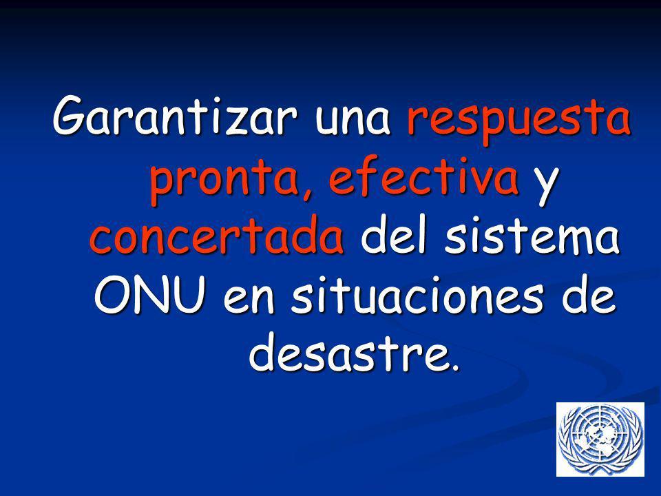 Garantizar una respuesta pronta, efectiva y concertada del sistema ONU en situaciones de desastre.