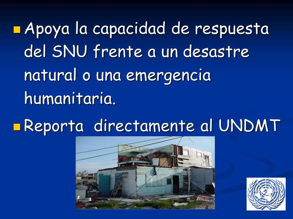 Apoya la capacidad de respuesta del SNU frente a un desastre natural o una emergencia humanitaria.