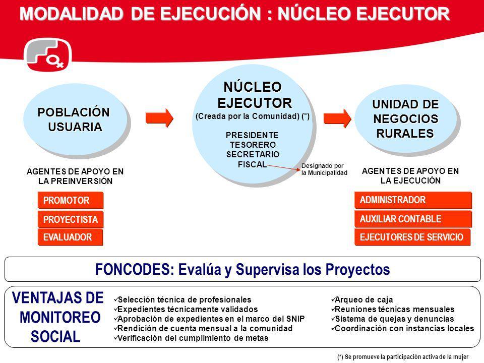 MODALIDAD DE EJECUCIÓN : NÚCLEO EJECUTOR